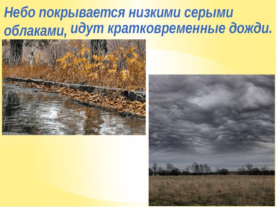 Небо покрывается низкими серыми облаками, идут кратковременные дожди.