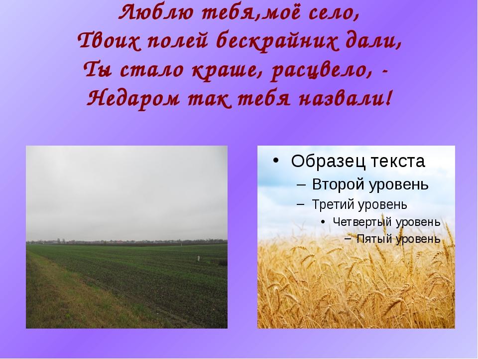 Люблю тебя,моё село, Твоих полей бескрайних дали, Ты стало краше, расцвело, -...