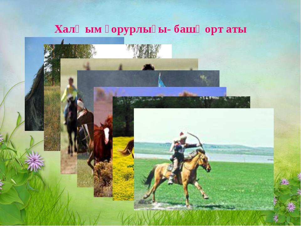Халҡым ғорурлығы- башҡорт аты