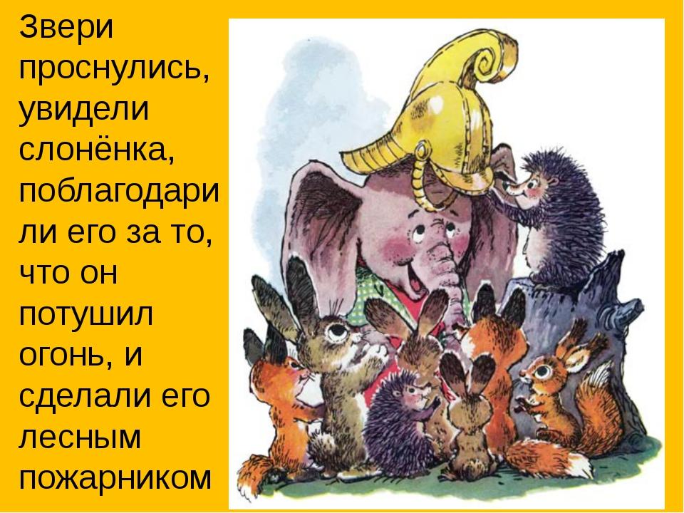 Звери проснулись, увидели слонёнка, поблагодарили его за то, что он потушил о...