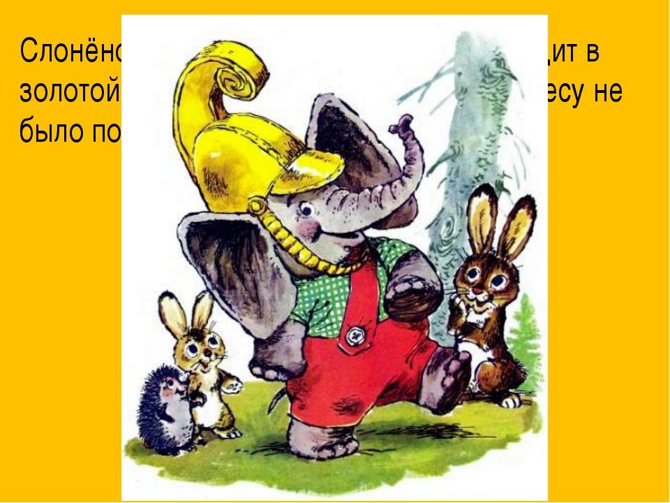 Слонёнок был очень горд. Теперь он ходит в золотой каске и следит за тем, что...