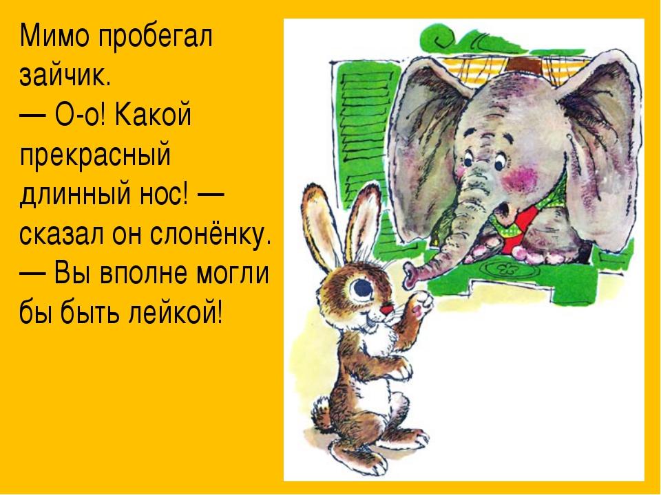Мимо пробегал зайчик. — О-о! Какой прекрасный длинный нос! — сказал он слонё...
