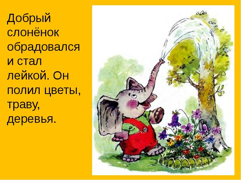 Добрый слонёнок обрадовался и стал лейкой. Он полил цветы, траву, деревья.