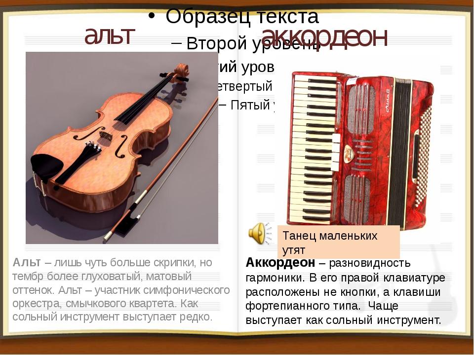 альт Альт – лишь чуть больше скрипки, но тембр более глуховатый, матовый отте...