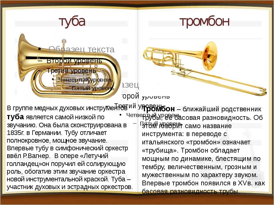 туба тромбон В группе медных духовых инструментов туба является самой низкой...