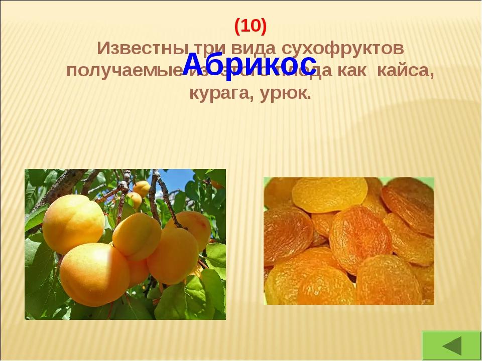(10) Известны три вида сухофруктов получаемые из этого плода как кайса, кураг...
