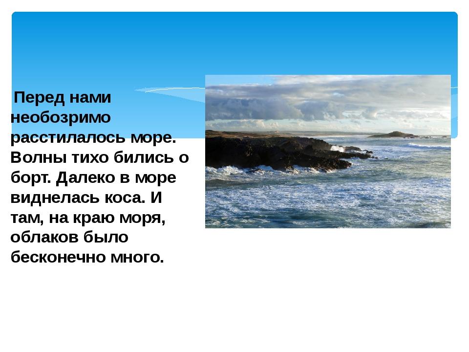 Перед нами необозримо расстилалось море. Волны тихо бились о борт. Далеко в...