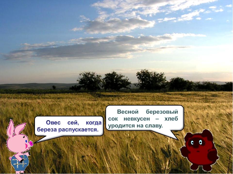 Береза не только участвовала в праздник. С ней крестьяне – земледельцы связыв...