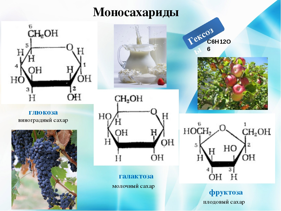 Гексозы Моносахариды глюкоза галактоза фруктоза виноградный сахар молочный са...