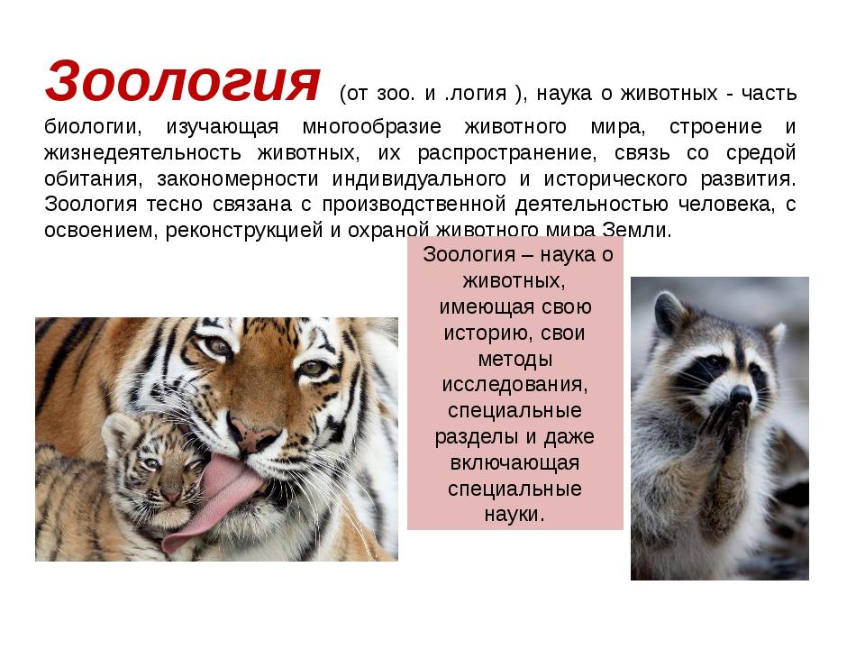 Зоология (от зоо. и .логия ), наука о животных - часть биологии, изучающая мн...