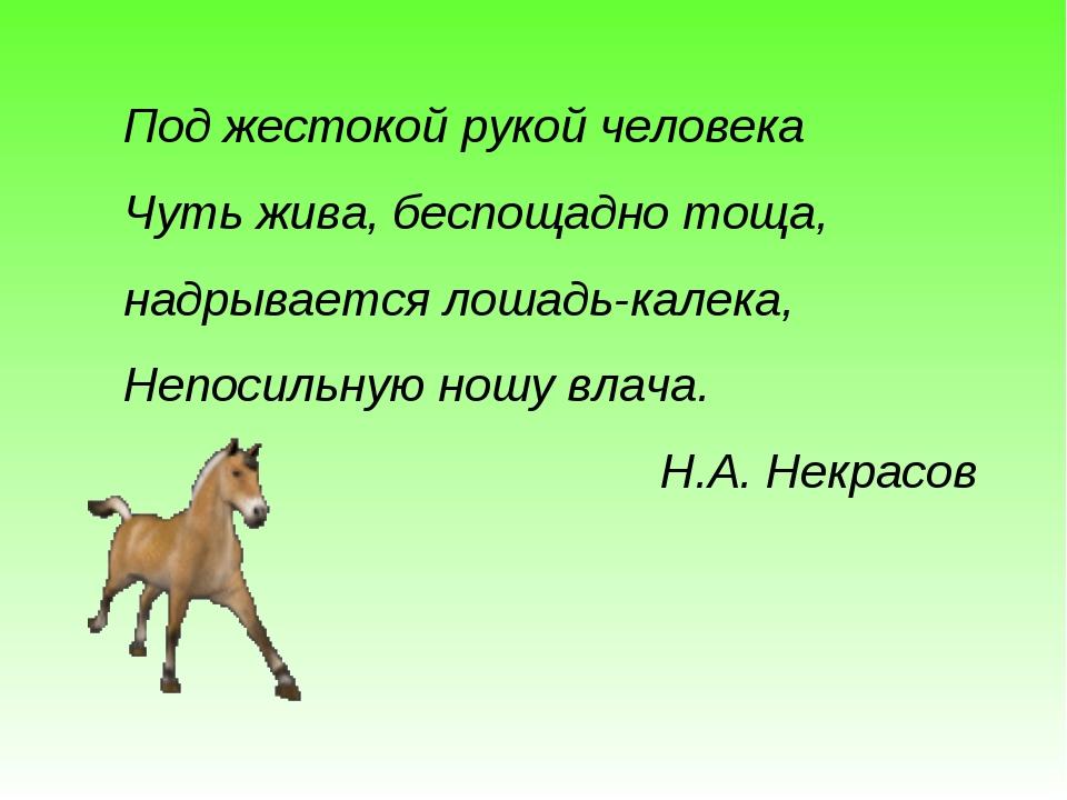 Под жестокой рукой человека Чуть жива, беспощадно тоща, надрывается лошадь-ка...