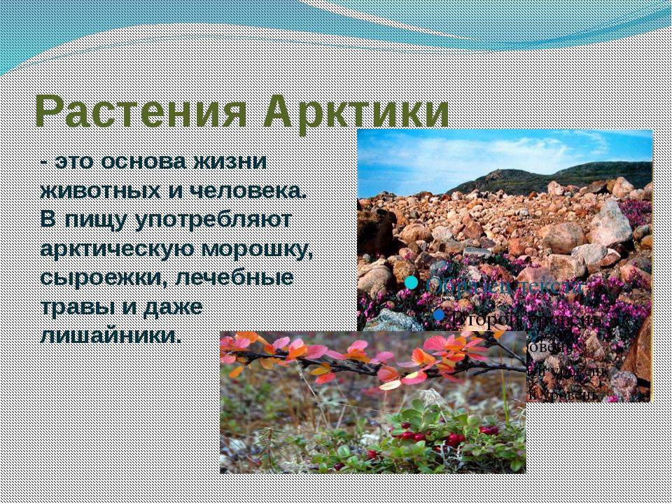 бесплатные растения арктики картинки с названиями вас обрадовать