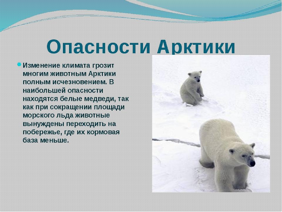 Исследование свойств и особенностей снега.