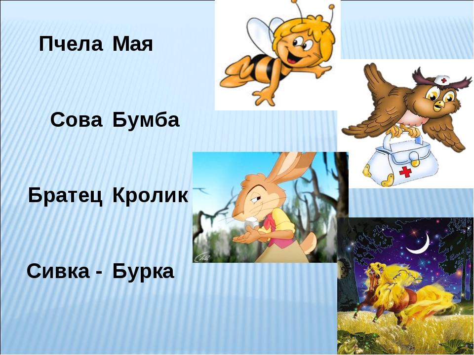 Пчела Сова Братец Сивка - Мая Бумба Кролик Бурка