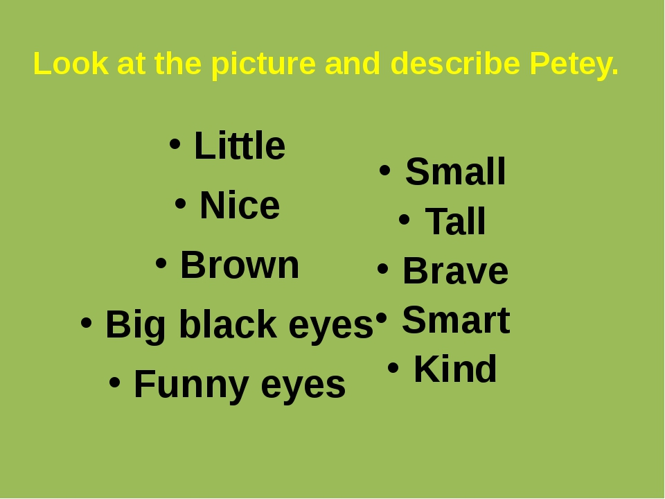 Look at the picture and describe Petey. Little Nice Brown Big black eyes Funn...