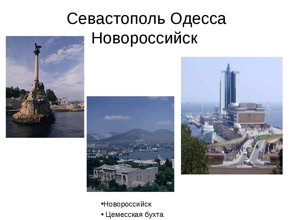 Севастополь Одесса Новороссийск Новороссийск Цемесская бухта