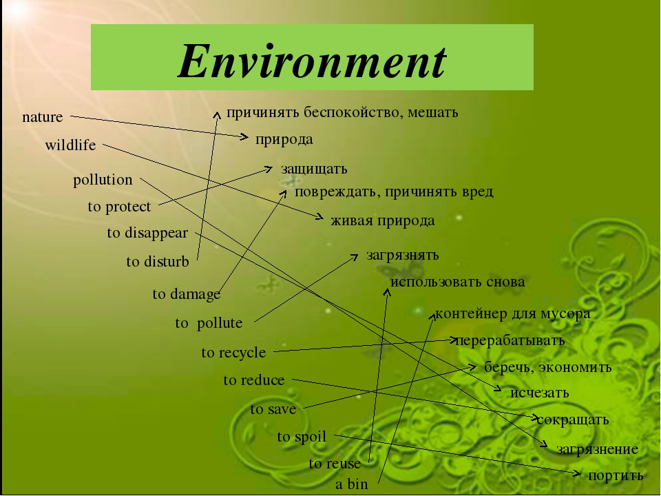Environment nature to protect a bin to pollute to spoil to recycle to save wi...