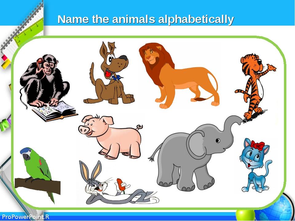 Name the animals alphabetically ProPowerPoint.Ru