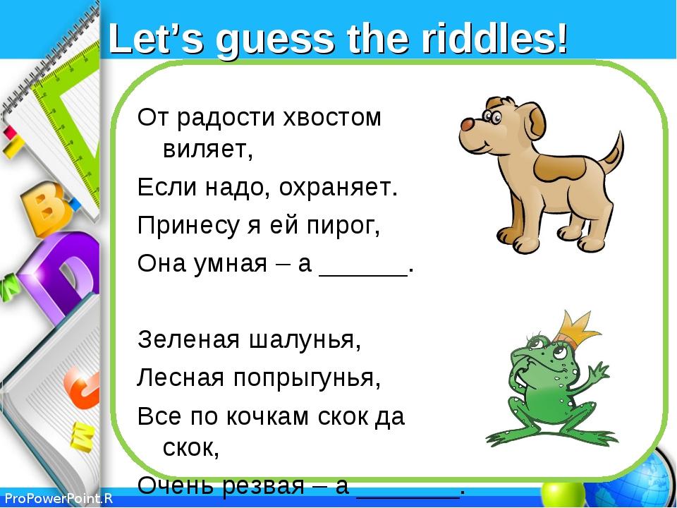 Let's guess the riddles! От радости хвостом виляет, Если надо, охраняет. Прин...