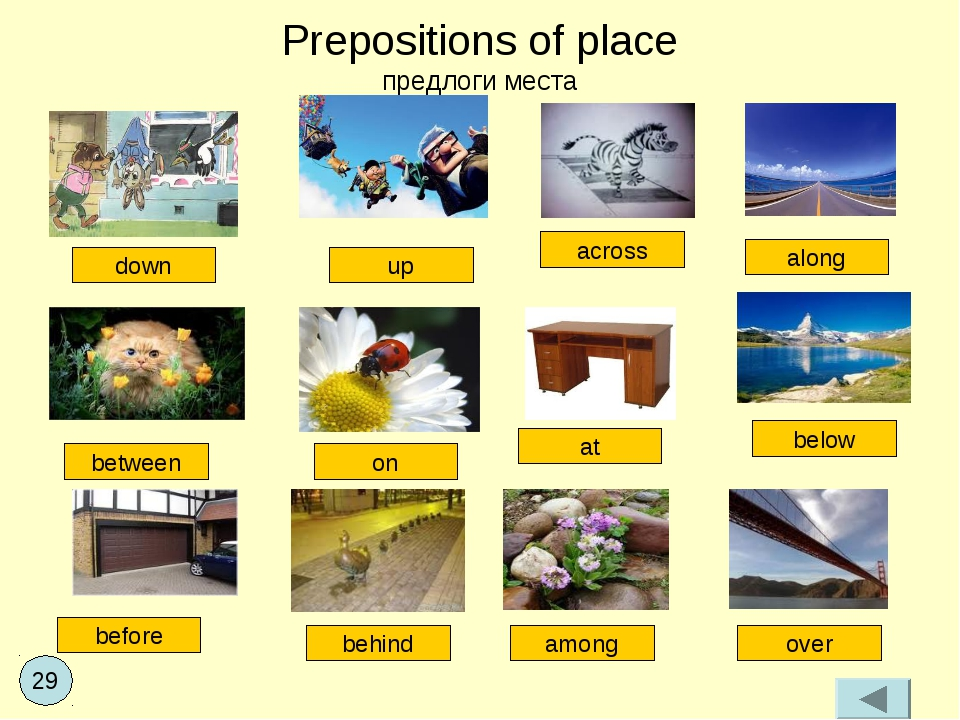 Prepositions of place предлоги места between along across up down on at below...