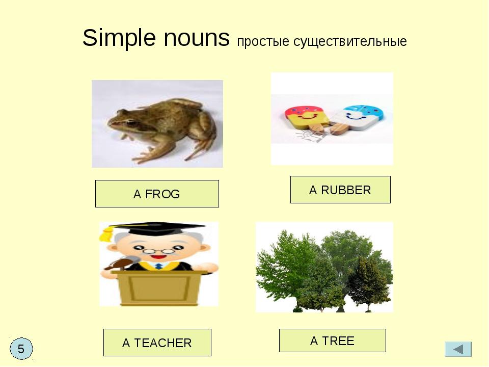 Simple nouns простые существительные A FROG A RUBBER A TEACHER A TREE 5