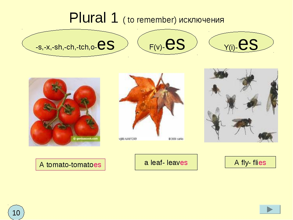 Plural 1 ( to remember) исключения -s,-x,-sh,-ch,-tch,o-es Y(i)-es F(v)-es A...