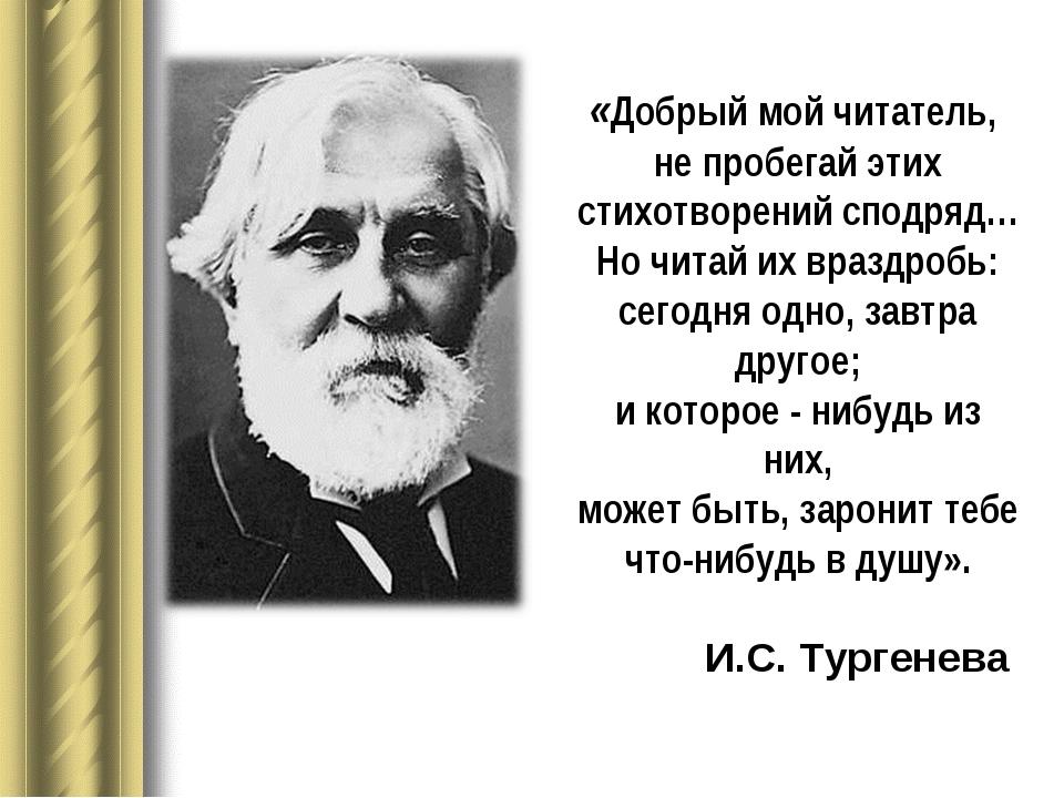 «Добрый мой читатель, не пробегай этих стихотворений сподряд… Но читай их вра...