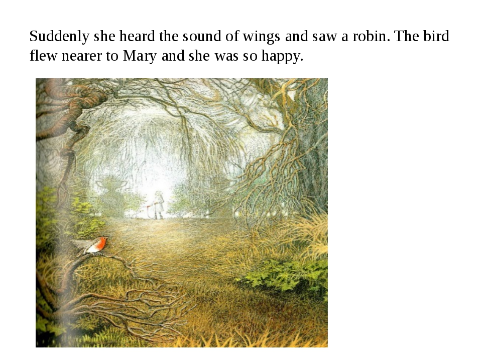 Suddenly she heard the sound of wings and saw a robin. The bird flew nearer t...