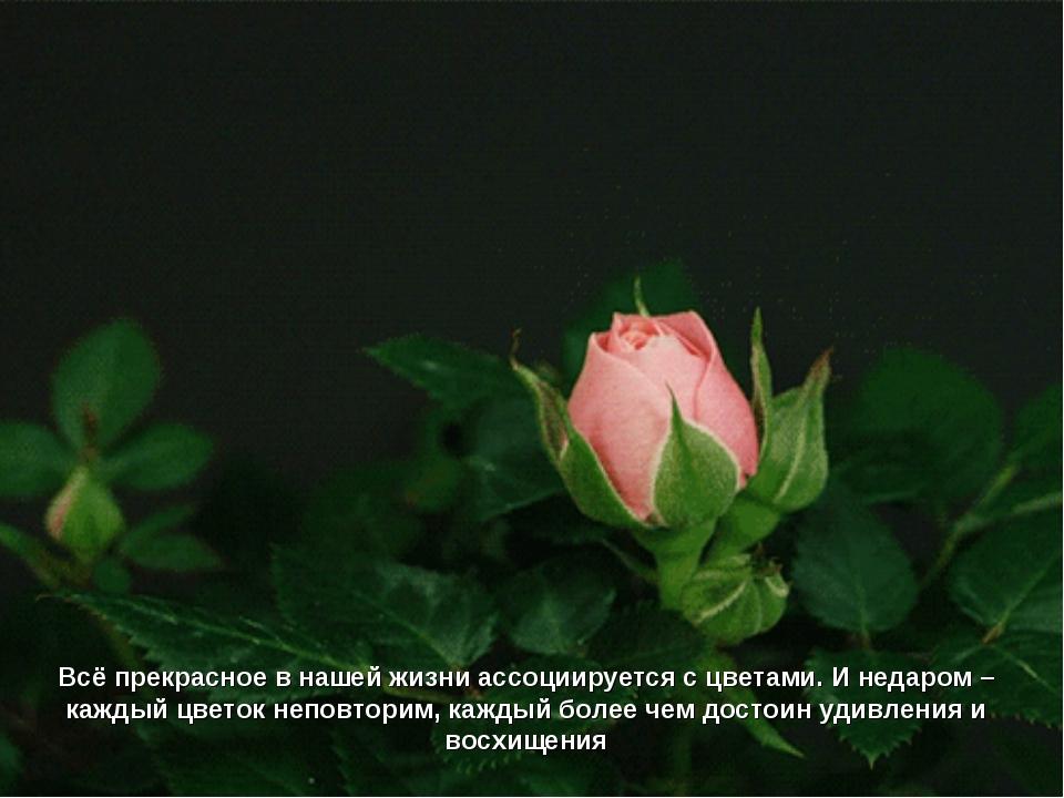 Всё прекрасное в нашей жизни ассоциируется с цветами. И недаром – каждый цвет...