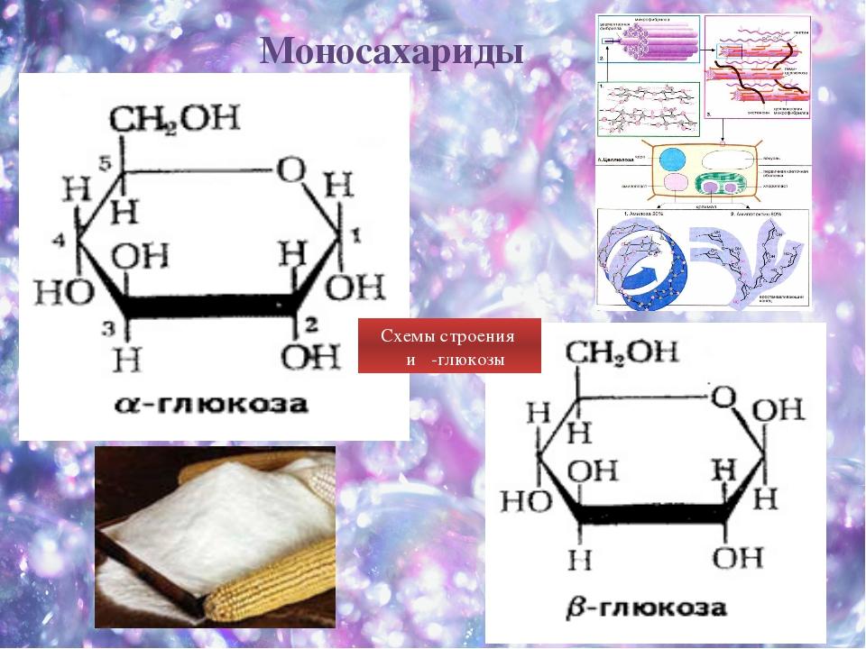 Схемы строения α и β-глюкозы Моносахариды