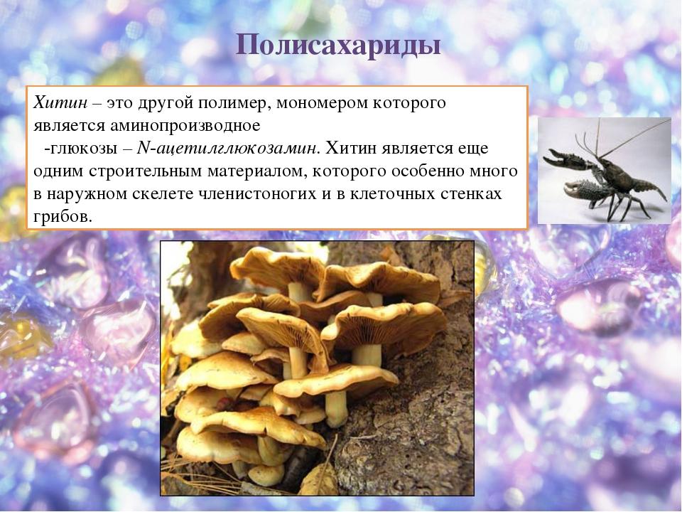 Хитин – это другой полимер, мономером которого является аминопроизводное β-гл...