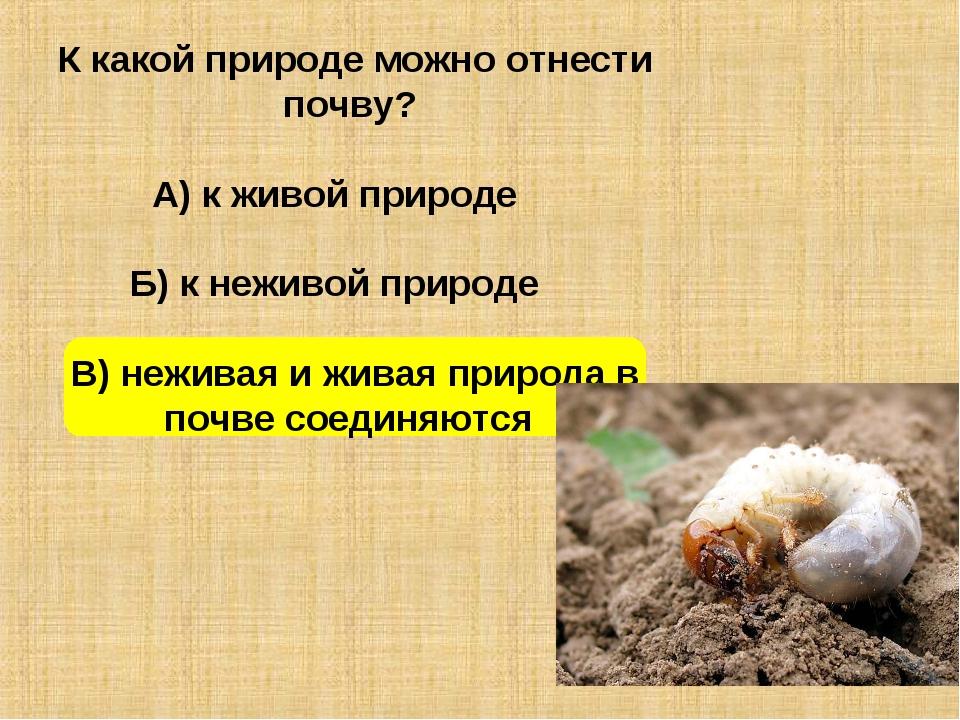 К какой природе можно отнести почву? А) к живой природе Б) к неживой природе...