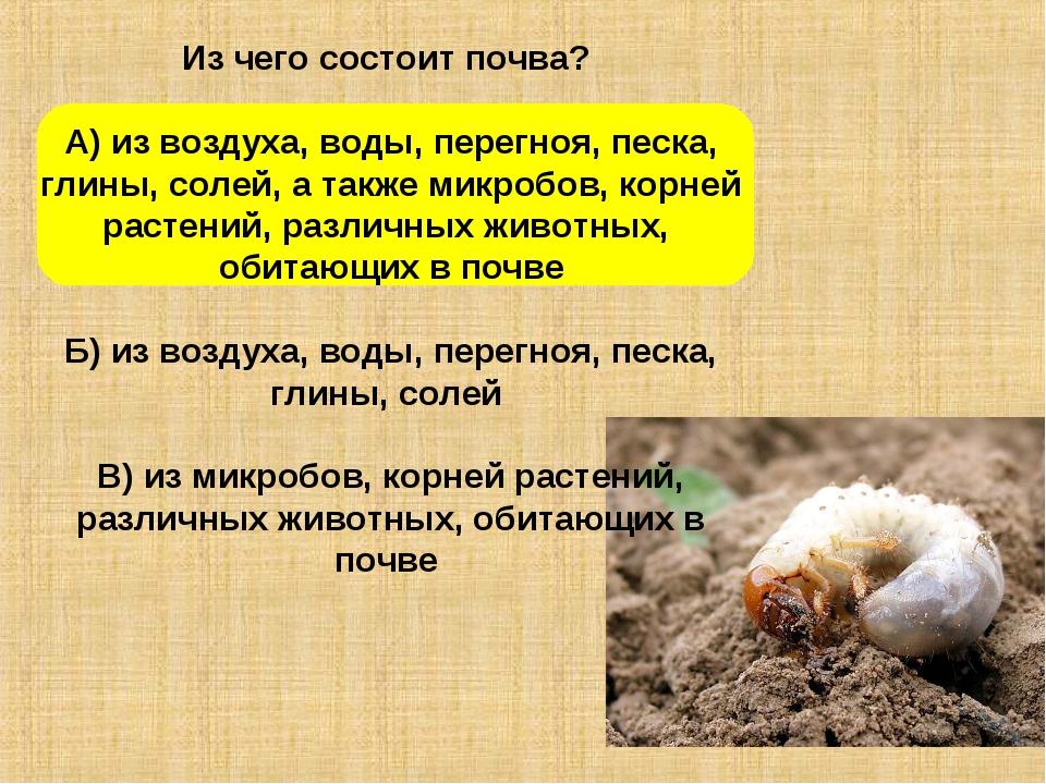 Из чего состоит почва? А) из воздуха, воды, перегноя, песка, глины, солей, а...