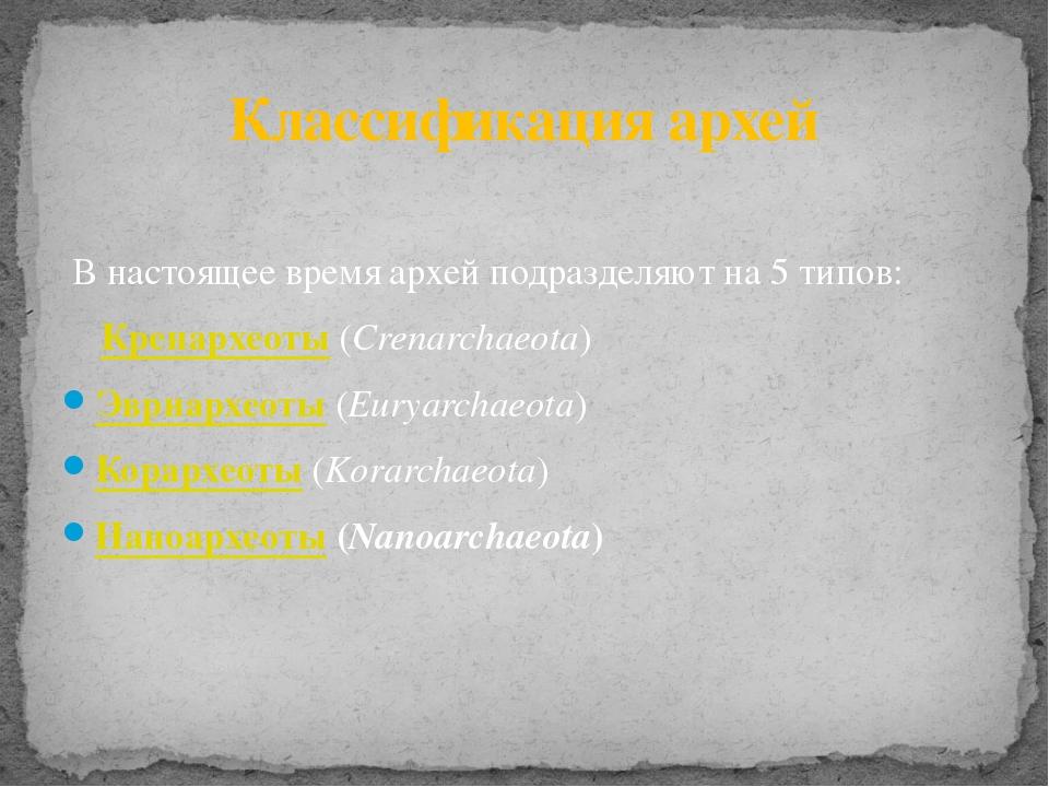 В настоящее время архей подразделяют на 5типов: Кренархеоты(Crenarchaeota)...