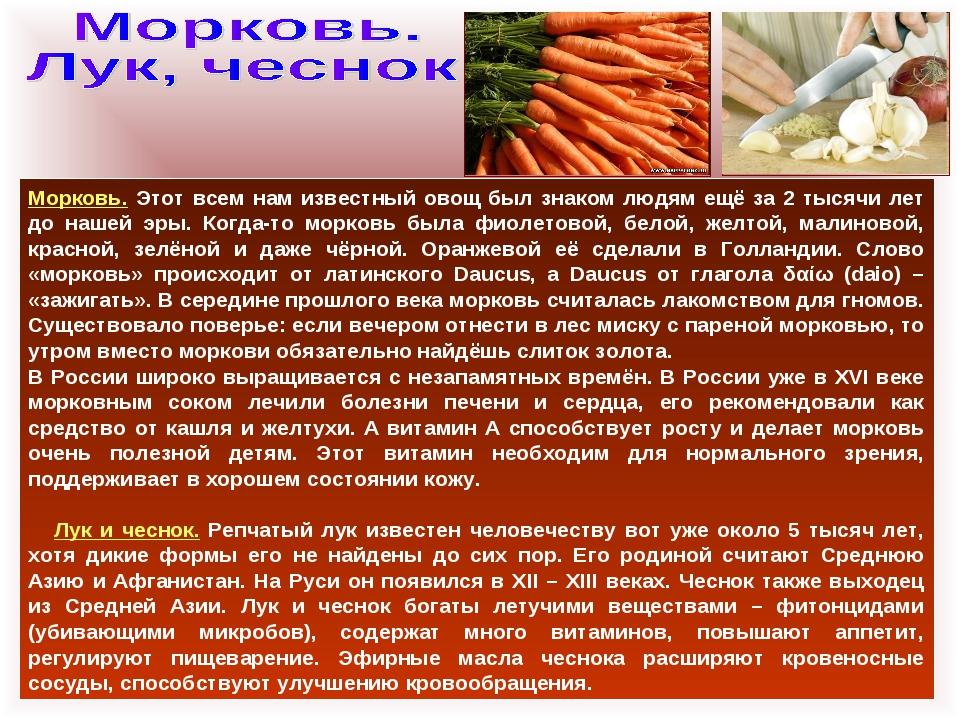 Морковь. Этот всем нам известный овощ был знаком людям ещё за 2 тысячи лет до...