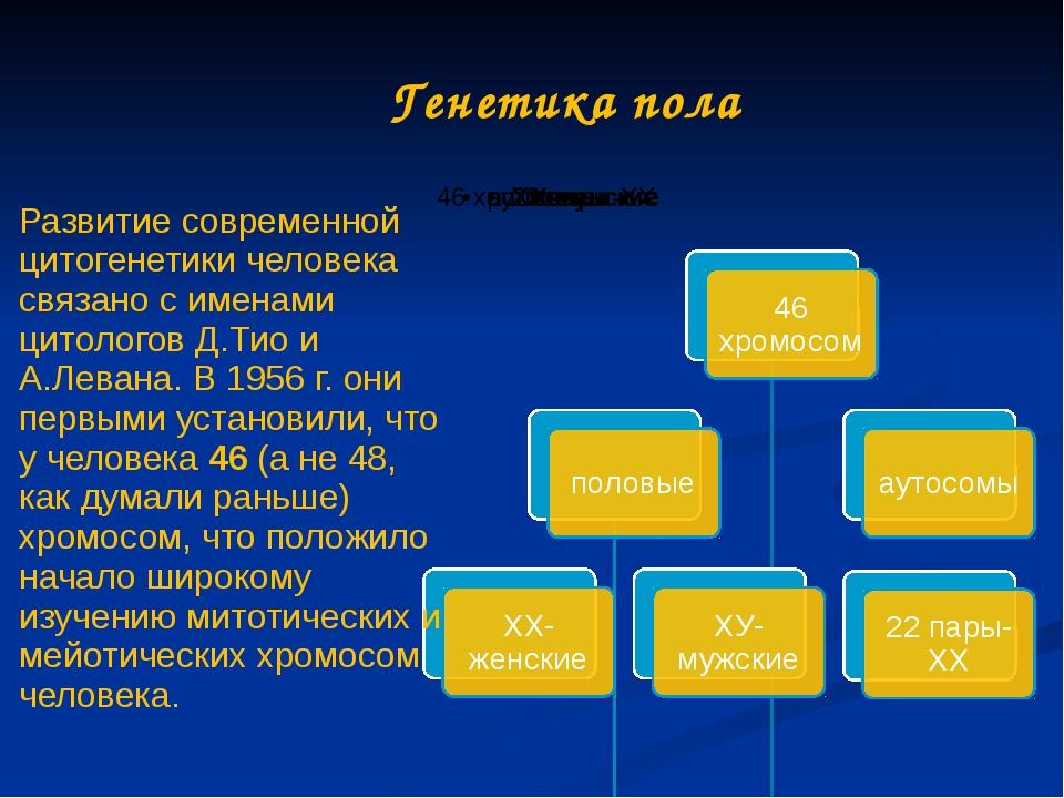 Генетика пола Развитие современной цитогенетики человека связано с именами ци...