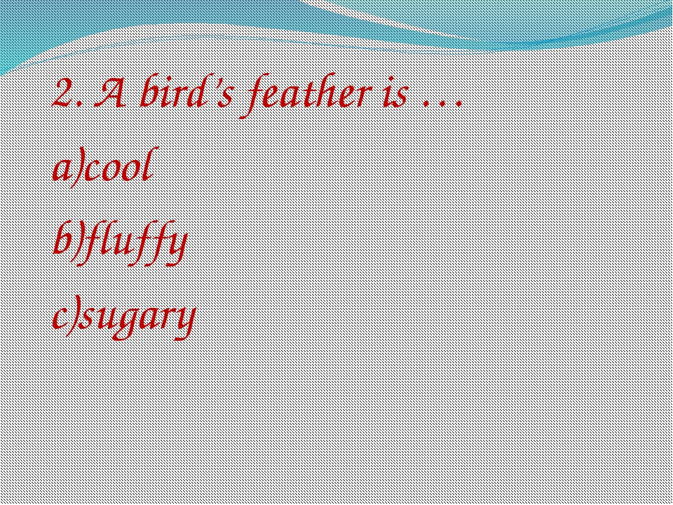 2. A bird's feather is … a)cool b)fluffy c)sugary