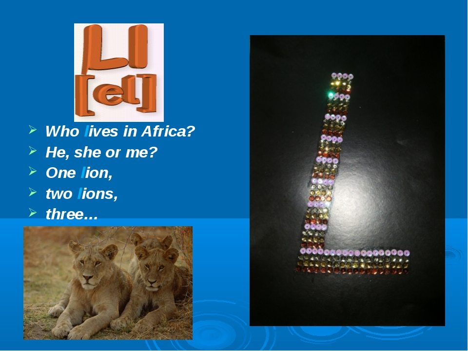 Who lives in Africa? He, she or me? One lion, two lions, three…