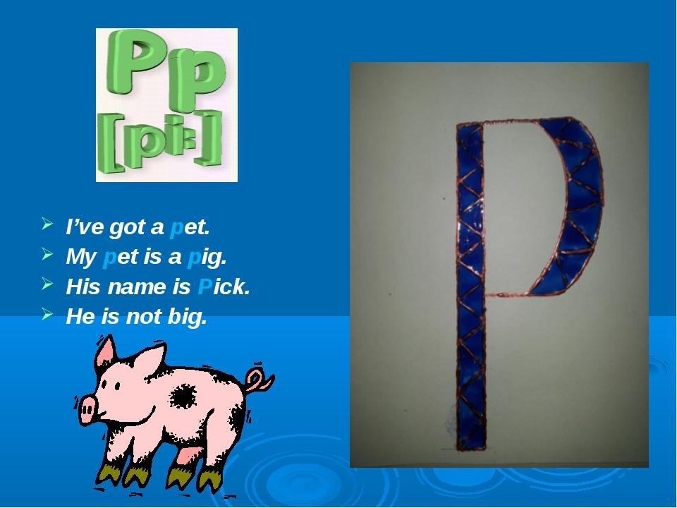 I've got a pet. My pet is a pig. His name is Pick. He is not big.