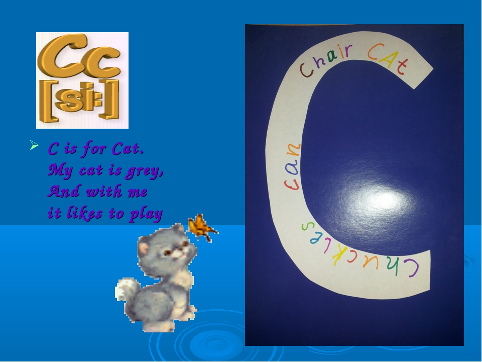 C is for Cat. My cat is grey, And with me it likes to play