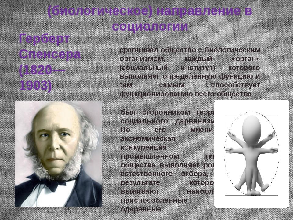 II этап (биологическое) направление в социологии Герберт Спенсера (1820—1903)...