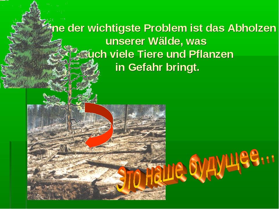 Eine der wichtigste Problem ist das Abholzen unserer Wälde, was auch viele T...