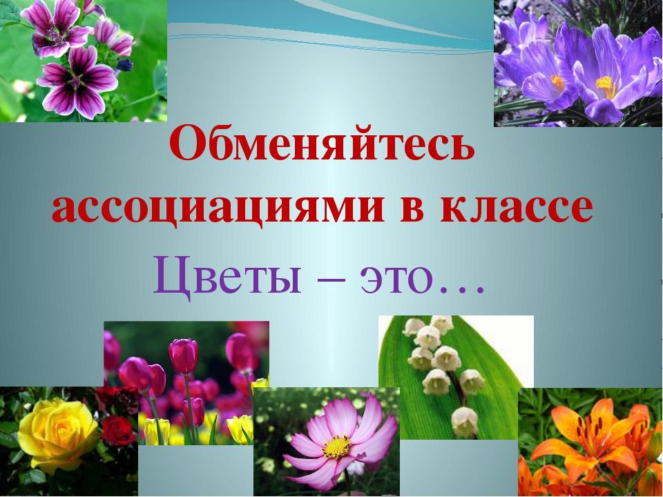 Обменяйтесь ассоциациями в классе Цветы – это…