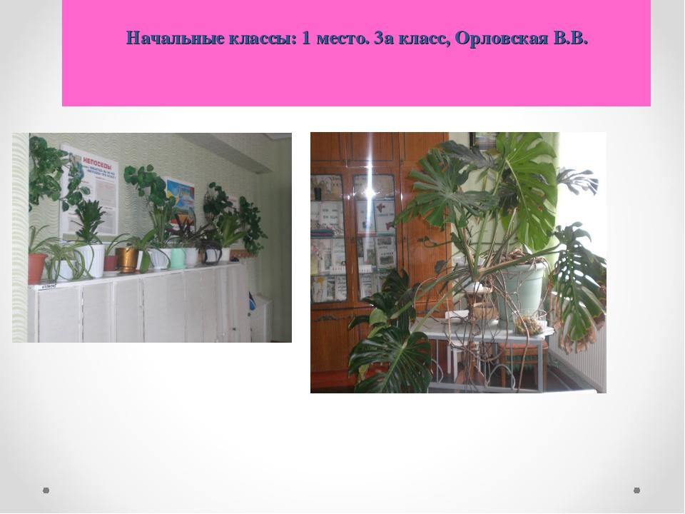 Начальные классы: 1 место. 3а класс, Орловская В.В.