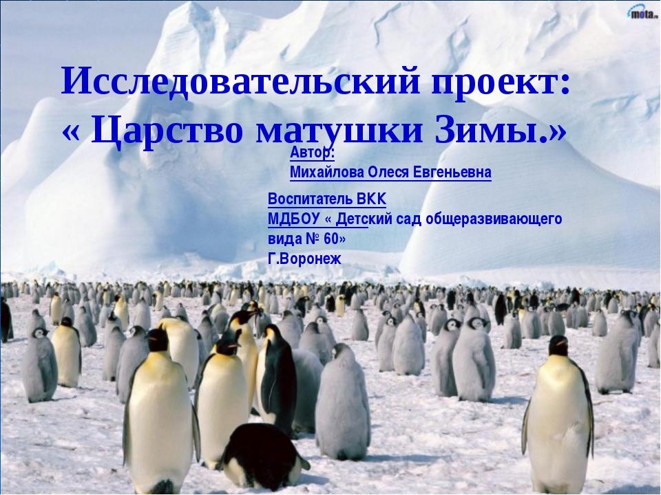 Исследовательский проект: « Царство матушки Зимы.» Автор: Михайлова Олеся Евг...