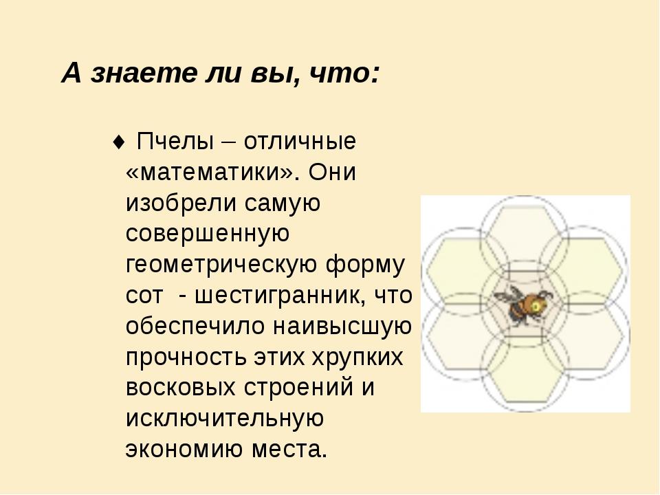 А знаете ли вы, что: Пчелы – отличные «математики». Они изобрели самую соверш...