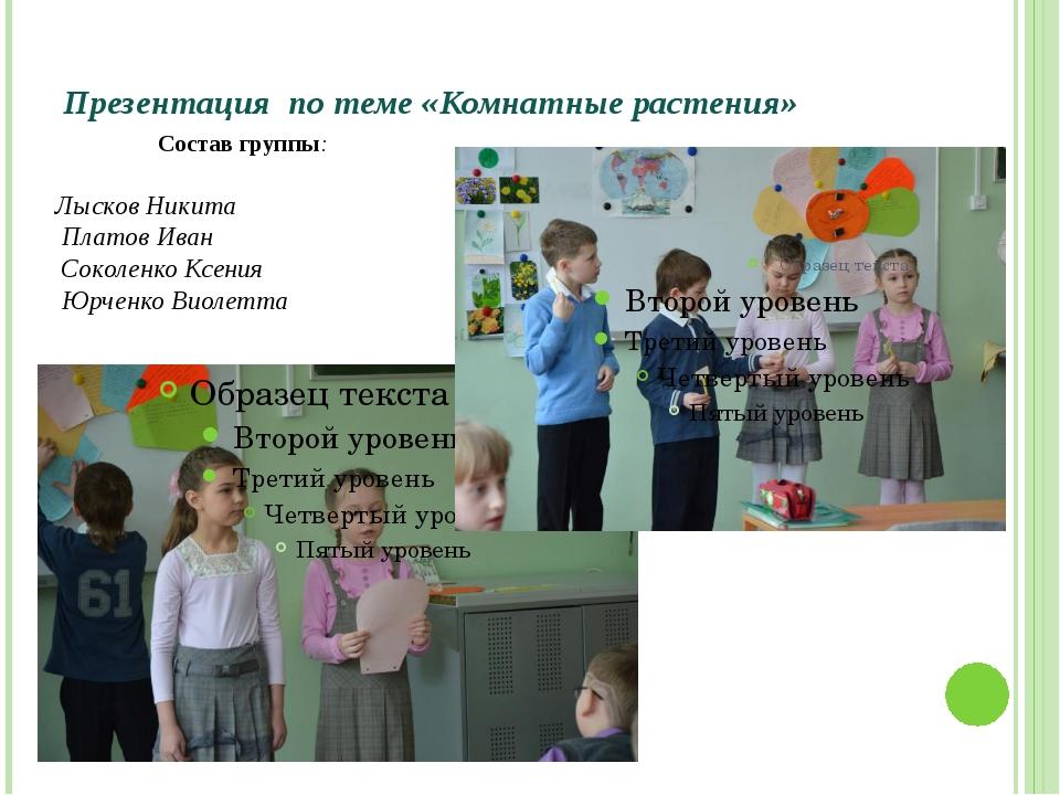 Презентация по теме «Комнатные растения» Состав группы: Лысков Никита Платов...
