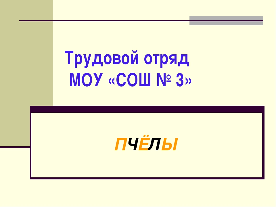 Трудовой отряд МОУ «СОШ № 3» ПЧЁЛЫ