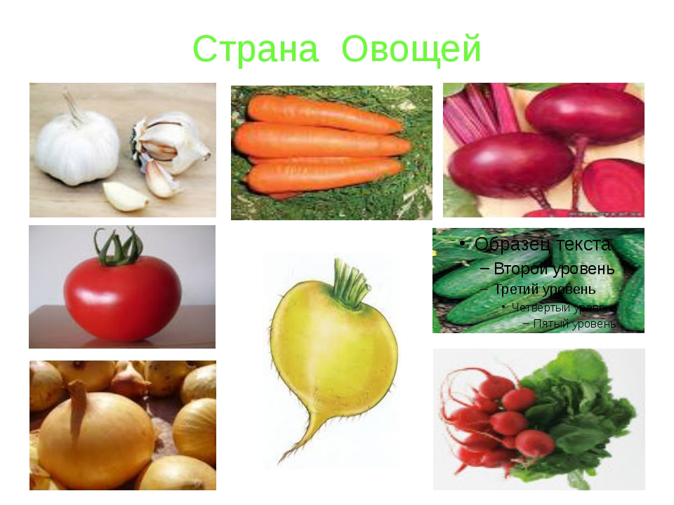 Страна Овощей