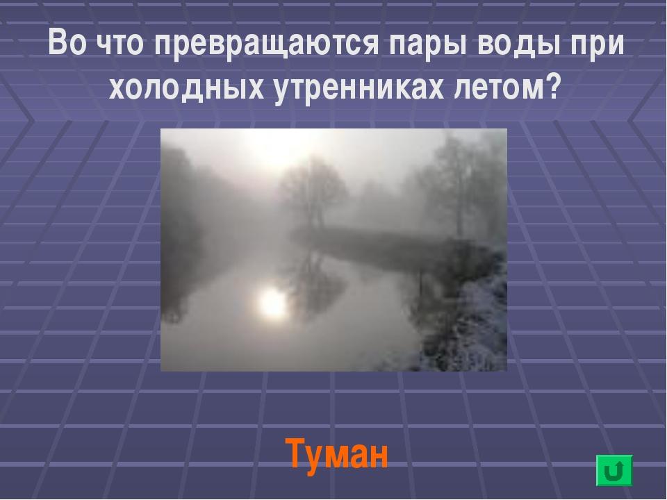 Во что превращаются пары воды при холодных утренниках летом? Туман